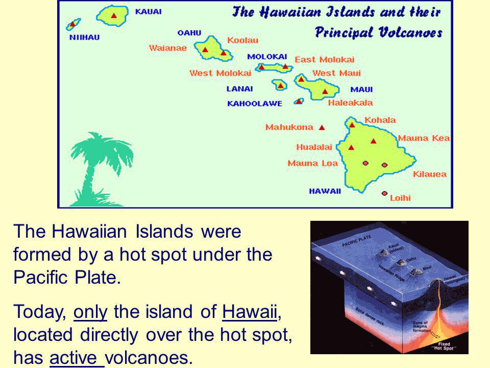The Hawaiian Islands were formed by a hot spot under the Pacific Plate.