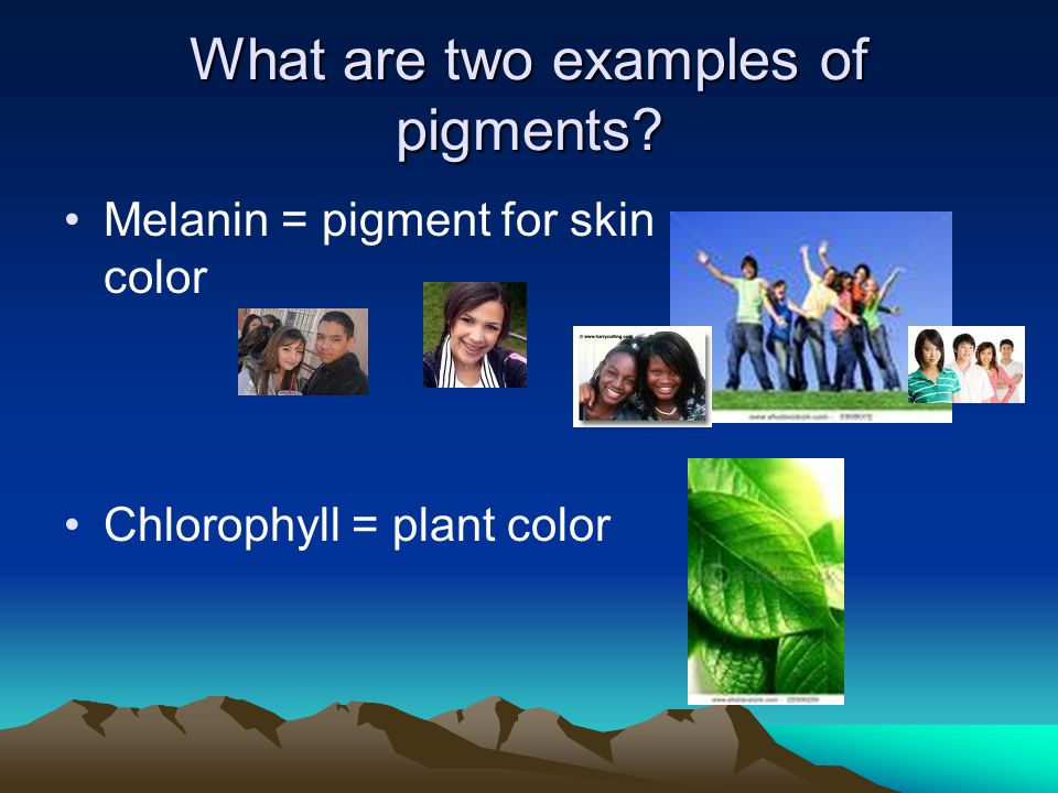 What are two examples of pigments
