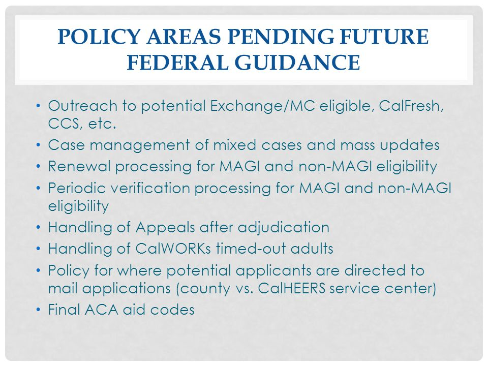 Policy Areas Pending Future Federal Guidance