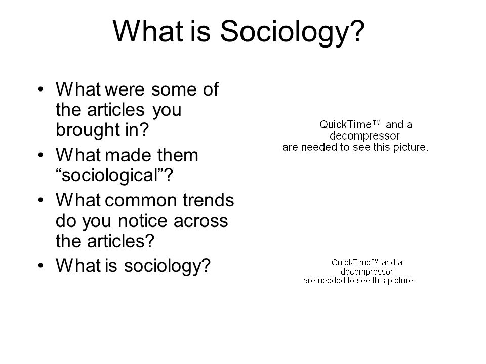 What is Sociology What were some of the articles you brought in