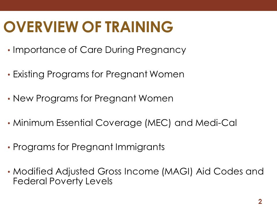OVERVIEW OF TRAINING Importance of Care During Pregnancy