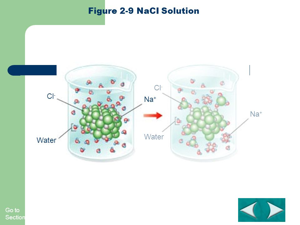Figure 2-9 NaCI Solution Cl- Cl- Na+ Na+ Water Water Section 2-2