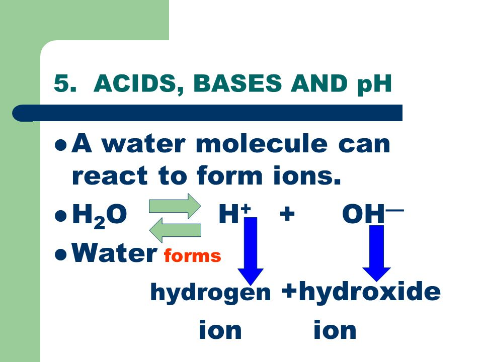 A water molecule can react to form ions. H2O H+ + OH— Water forms
