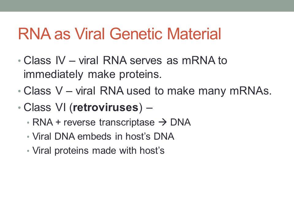 RNA as Viral Genetic Material