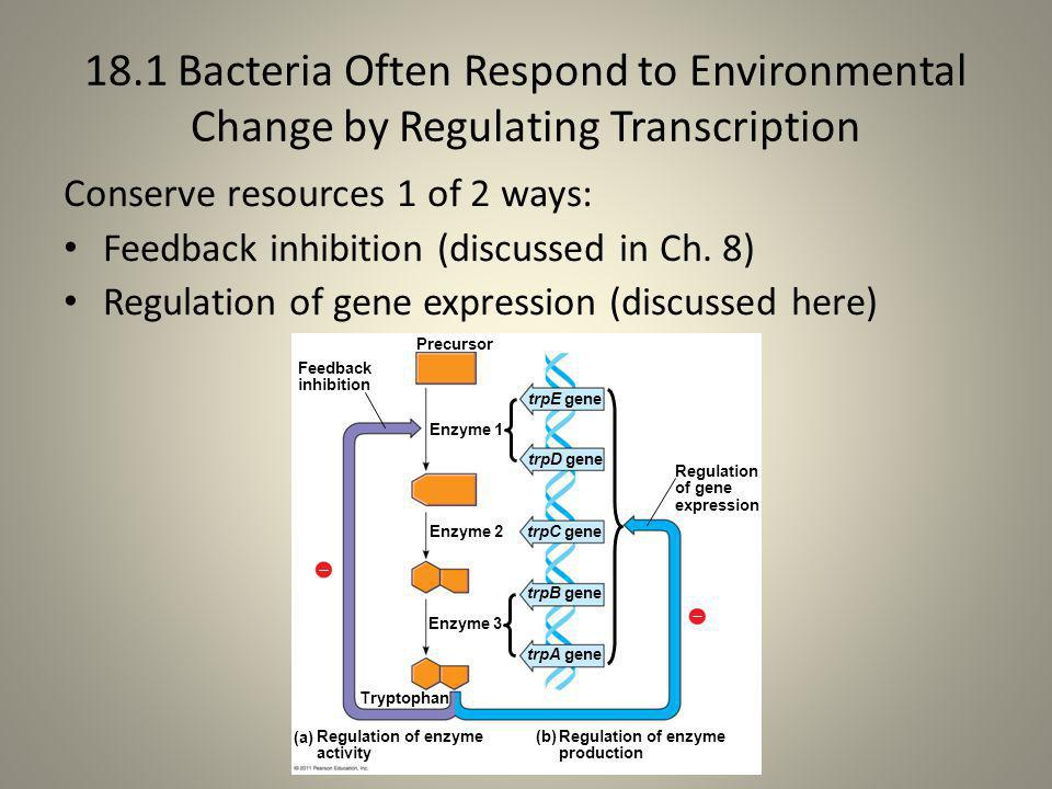 18.1 Bacteria Often Respond to Environmental Change by Regulating Transcription