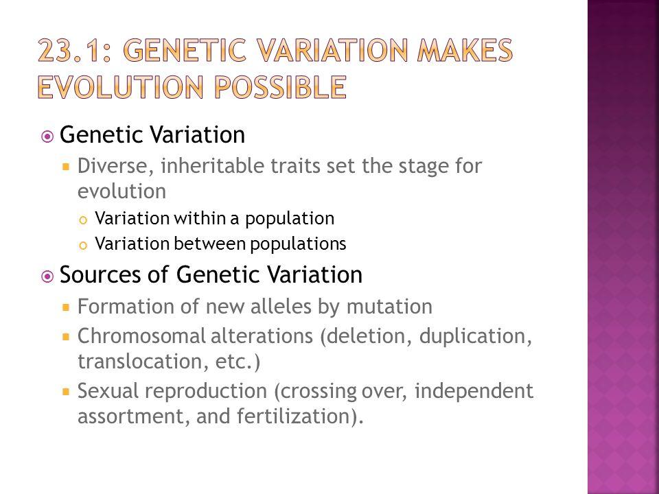 23.1: Genetic Variation Makes evolution possible