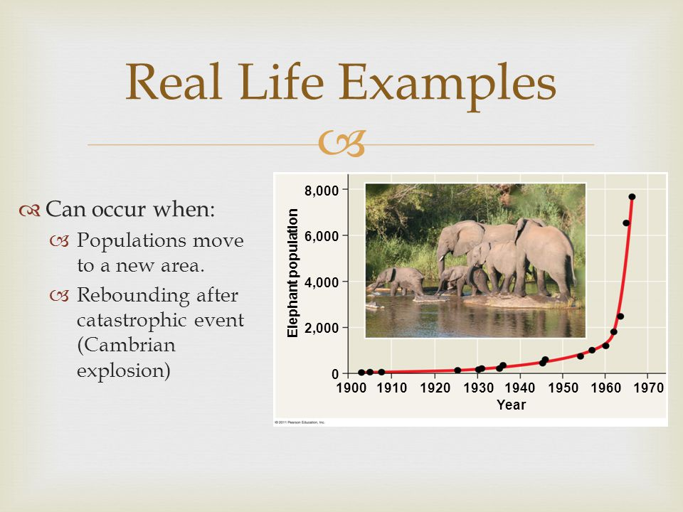 Real Life Examples Can occur when: Populations move to a new area.