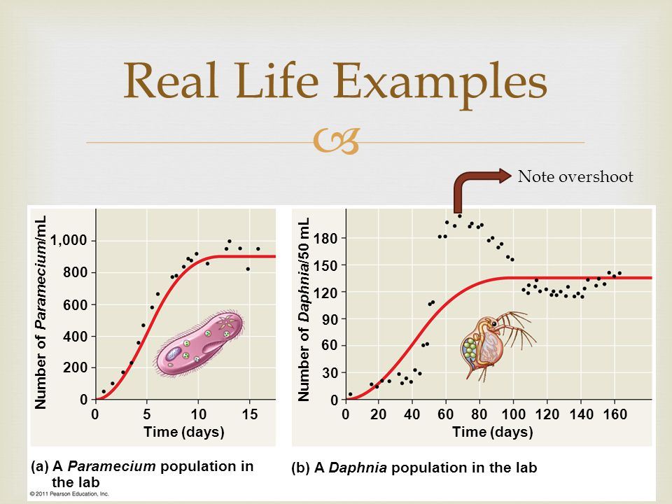 Real Life Examples Note overshoot Time (days)