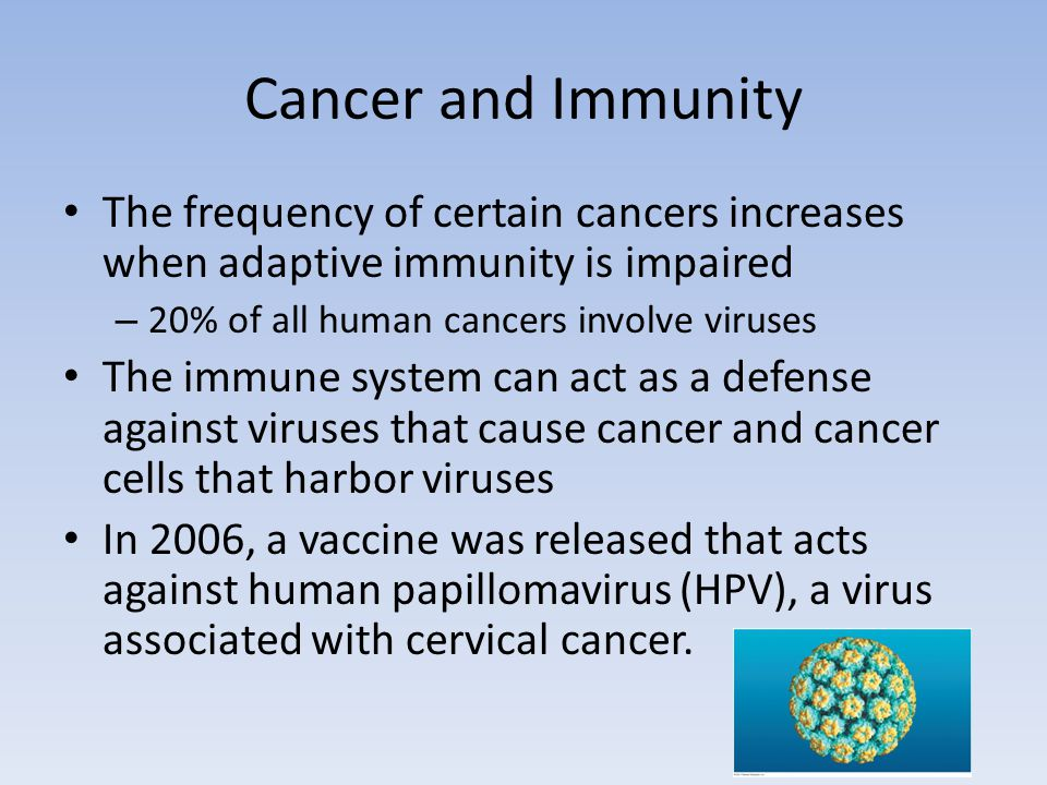 Cancer and Immunity The frequency of certain cancers increases when adaptive immunity is impaired. 20% of all human cancers involve viruses.