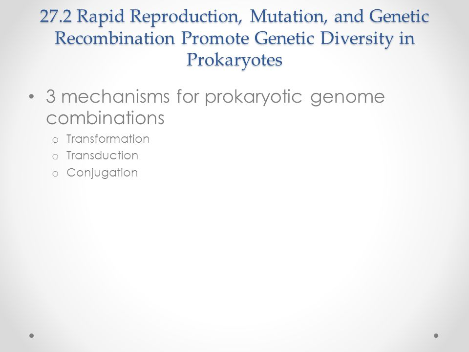 3 mechanisms for prokaryotic genome combinations