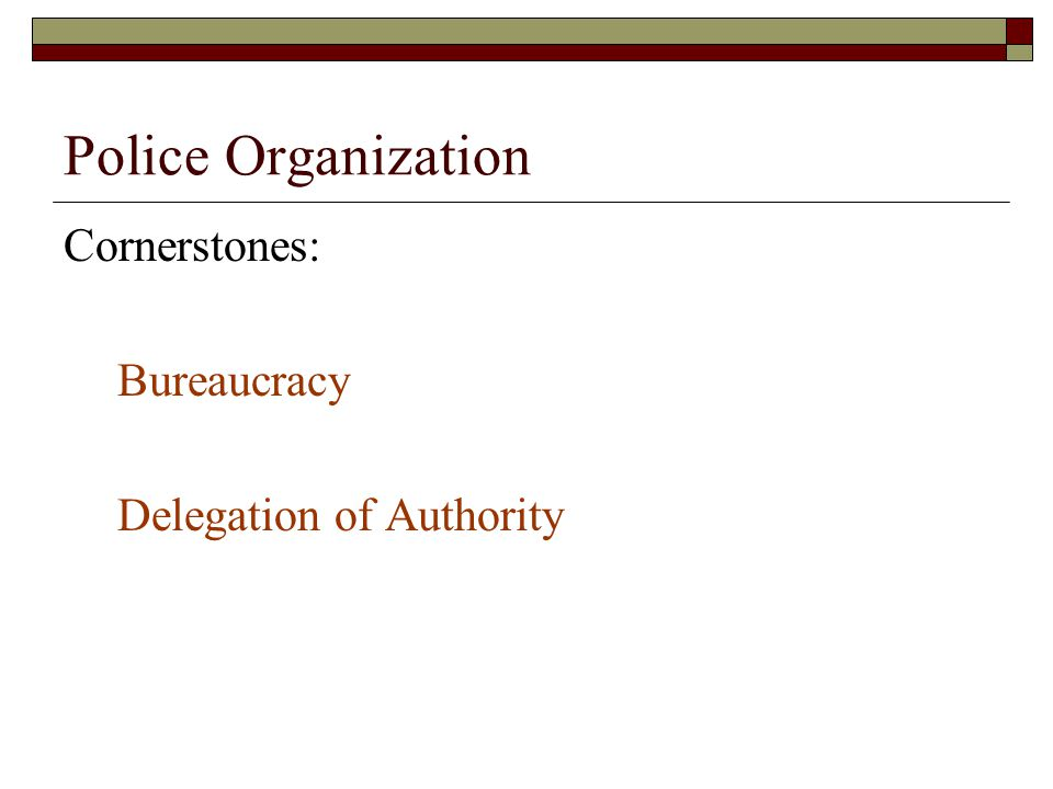 Police Organization Cornerstones: Bureaucracy Delegation of Authority
