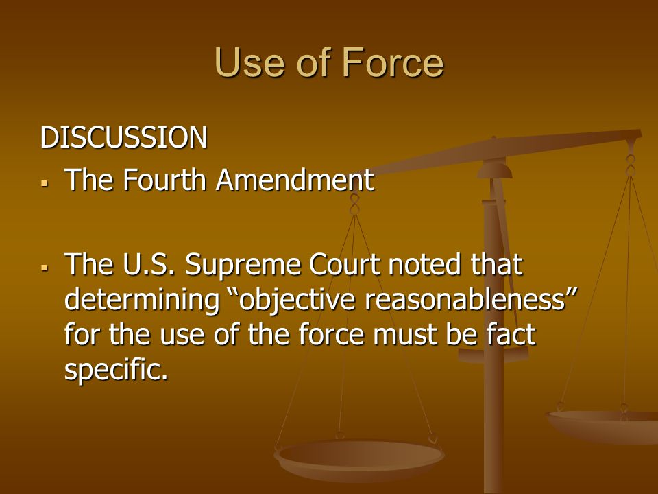 Use of Force DISCUSSION The Fourth Amendment