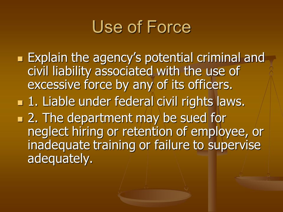 Use of Force Explain the agency's potential criminal and civil liability associated with the use of excessive force by any of its officers.