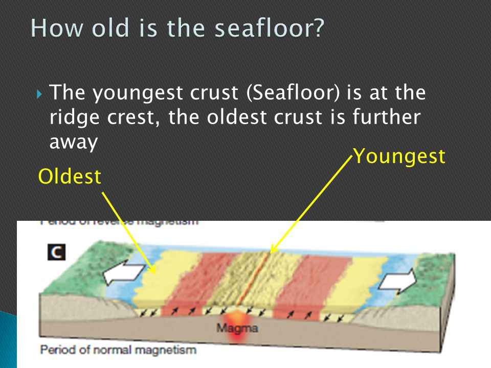How old is the seafloor The youngest crust (Seafloor) is at the ridge crest, the oldest crust is further away.
