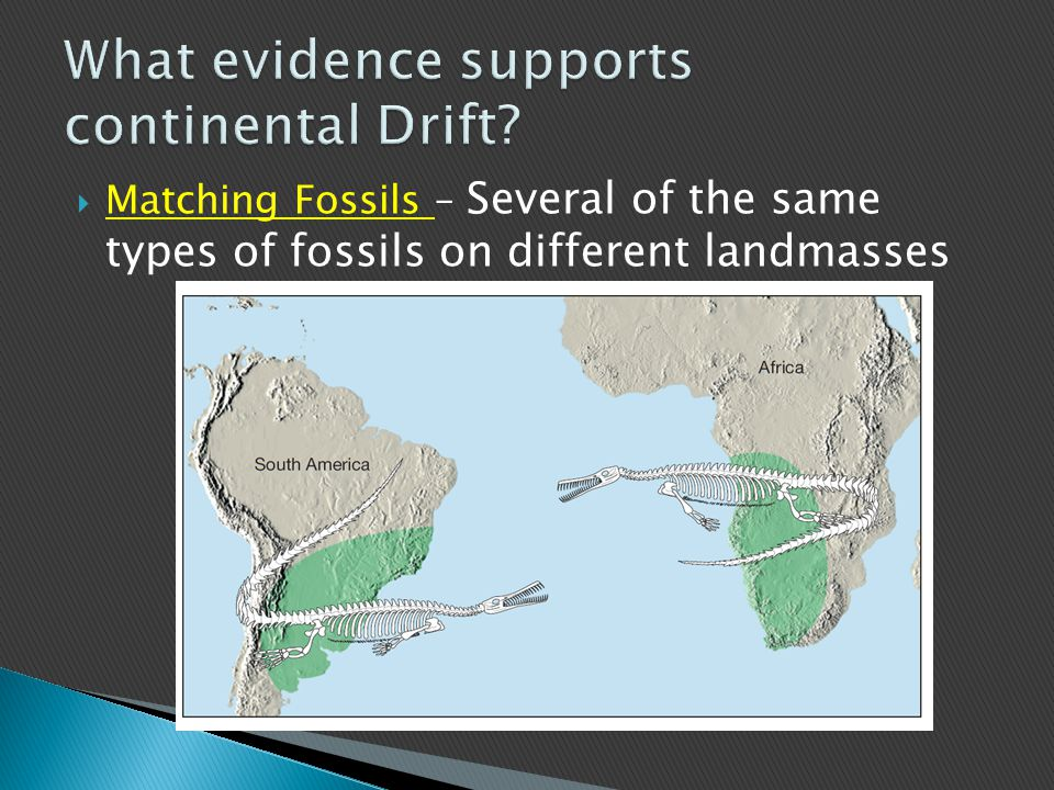 What evidence supports continental Drift