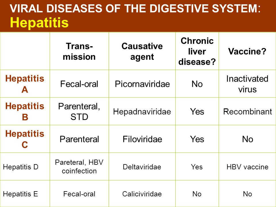 VIRAL DISEASES OF THE DIGESTIVE SYSTEM: Hepatitis