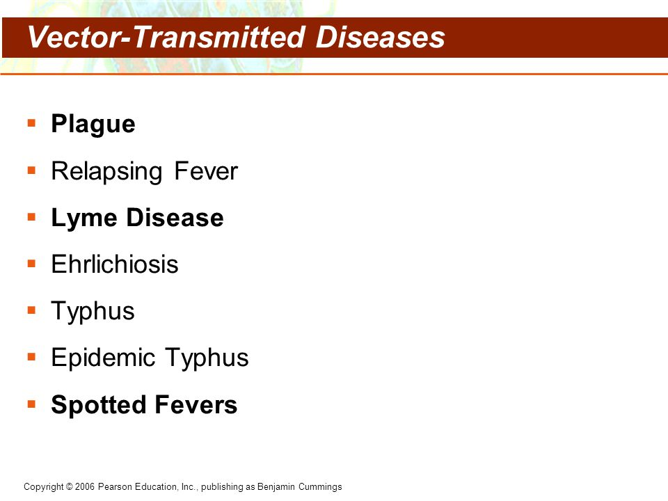 Vector-Transmitted Diseases