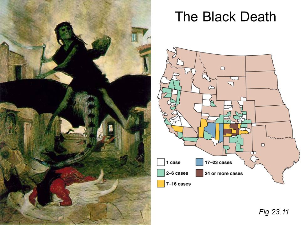 The Black Death Fig 23.11