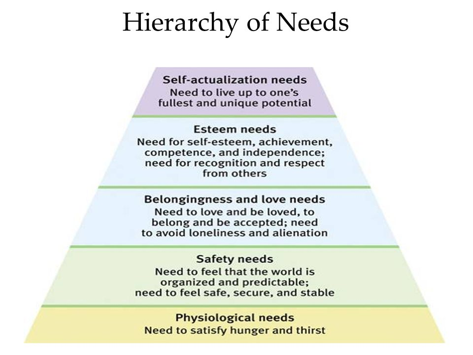 Hierarchy of Needs Order not universally fixed