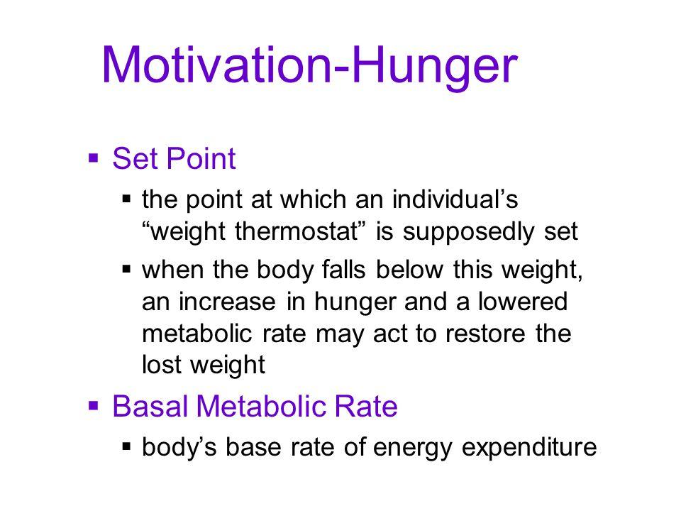 Motivation-Hunger Set Point Basal Metabolic Rate
