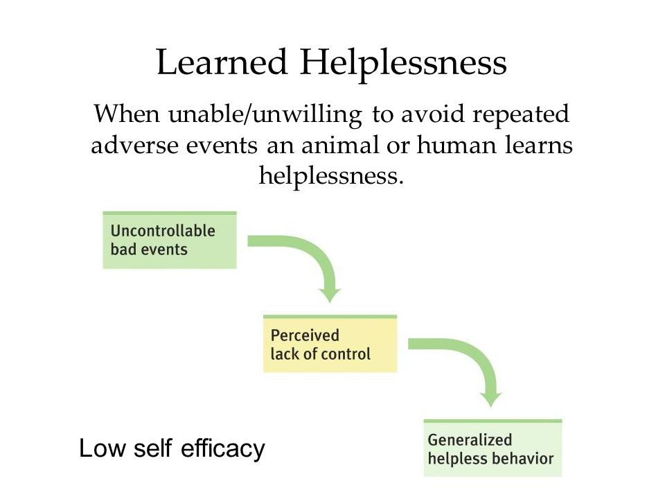 Learned Helplessness When unable/unwilling to avoid repeated adverse events an animal or human learns helplessness.