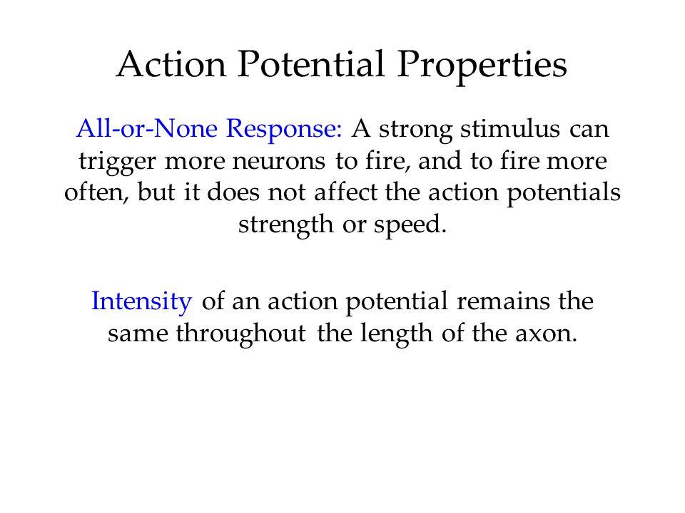 Action Potential Properties