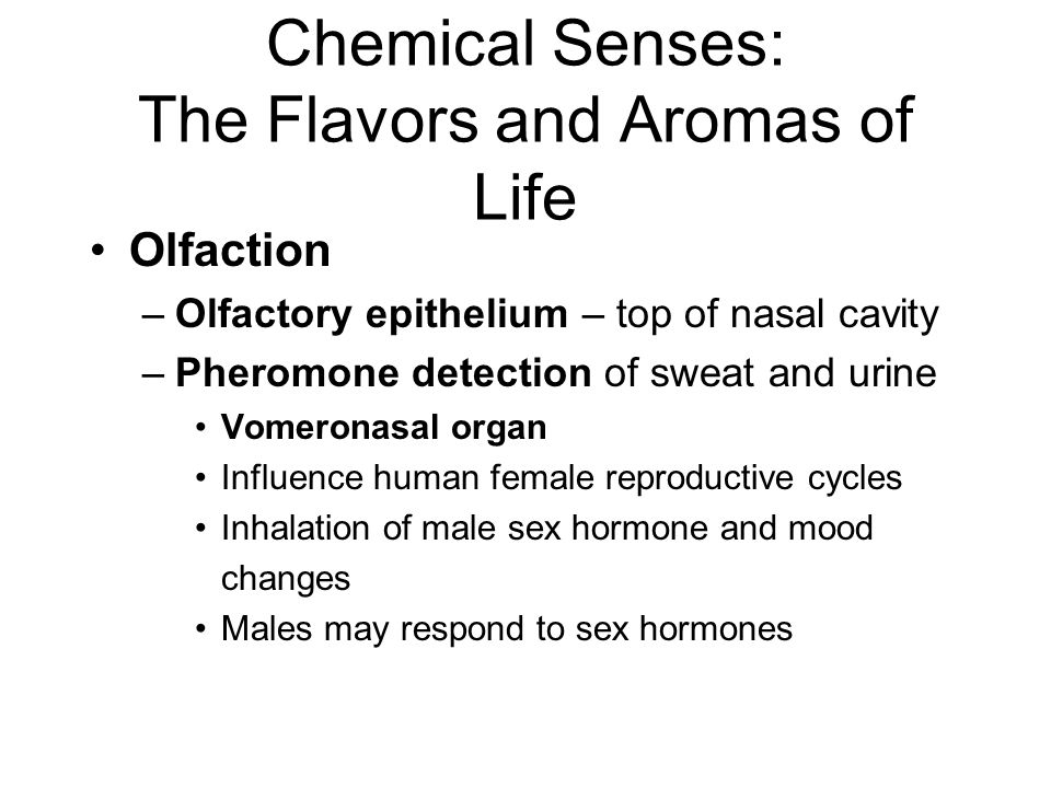 Chemical Senses: The Flavors and Aromas of Life