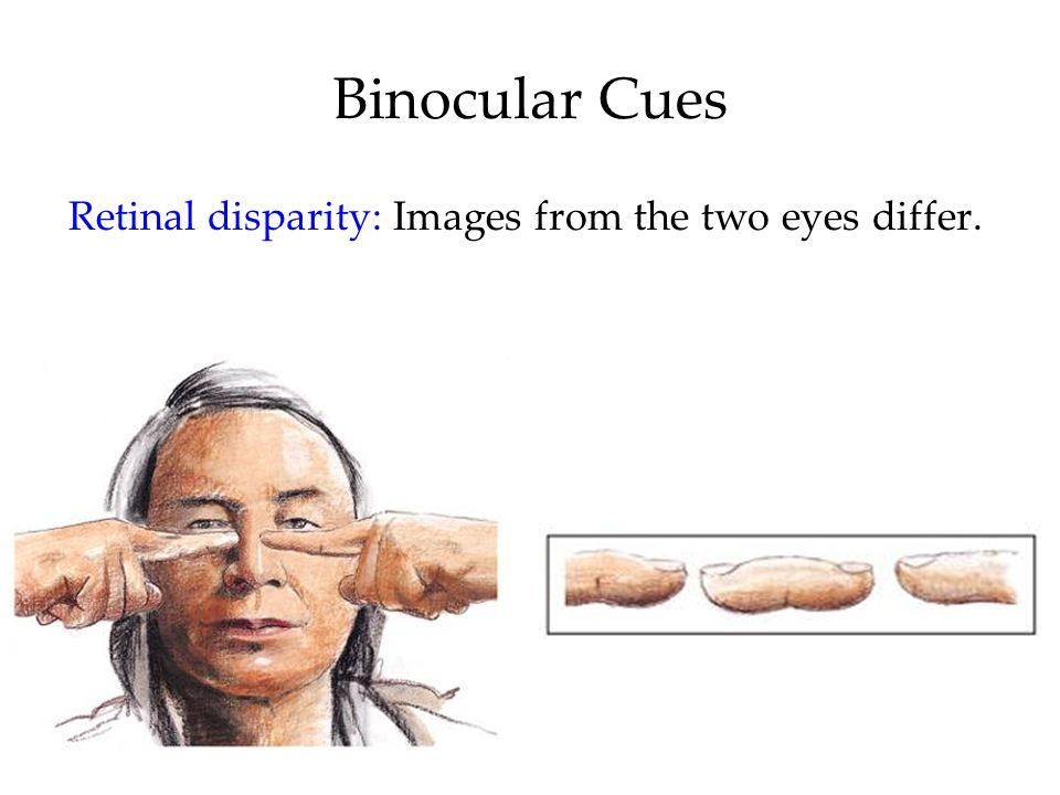 Retinal disparity: Images from the two eyes differ.