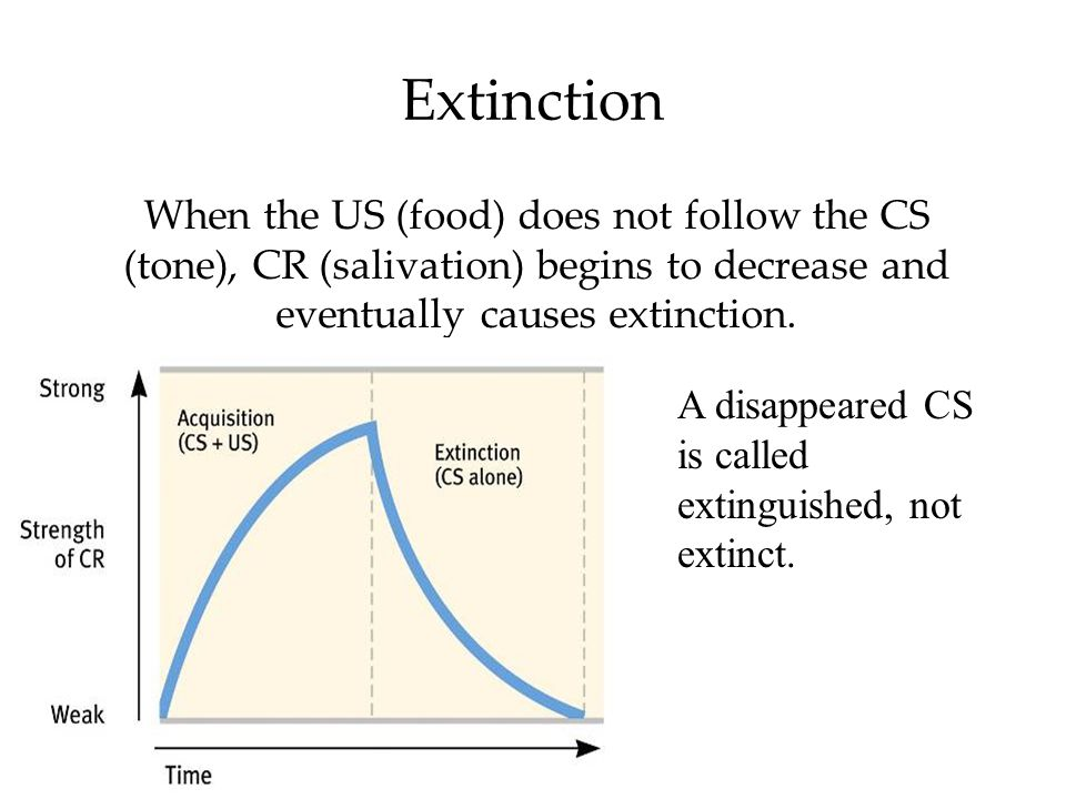 Extinction When the US (food) does not follow the CS (tone), CR (salivation) begins to decrease and eventually causes extinction.