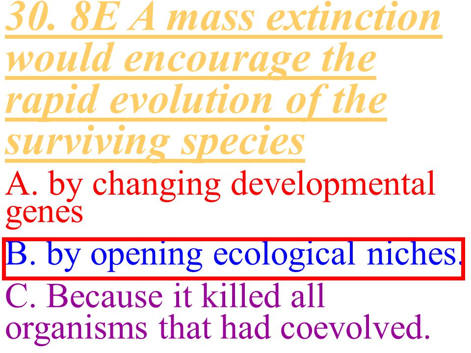 30. 8E A mass extinction would encourage the rapid evolution of the surviving species