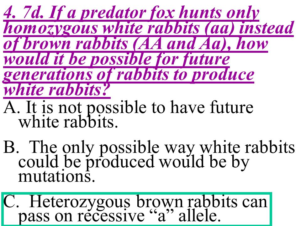 4. 7d. If a predator fox hunts only homozygous white rabbits (aa) instead of brown rabbits (AA and Aa), how would it be possible for future generations of rabbits to produce white rabbits