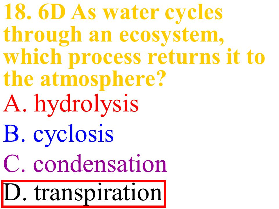 A. hydrolysis B. cyclosis C. condensation D. transpiration