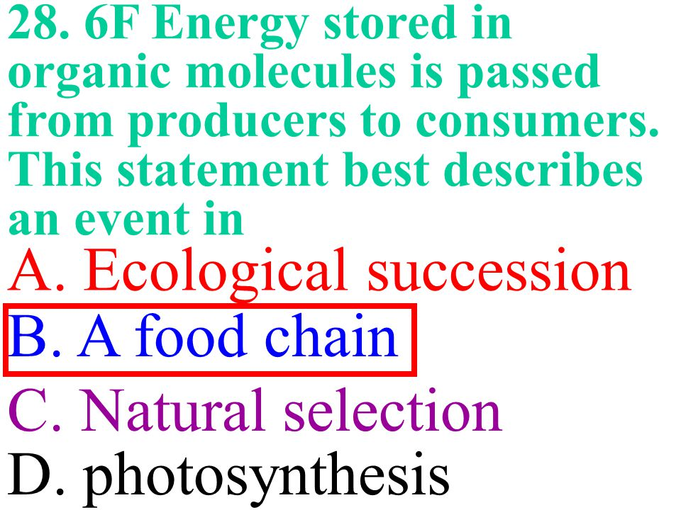 A. Ecological succession B. A food chain C. Natural selection