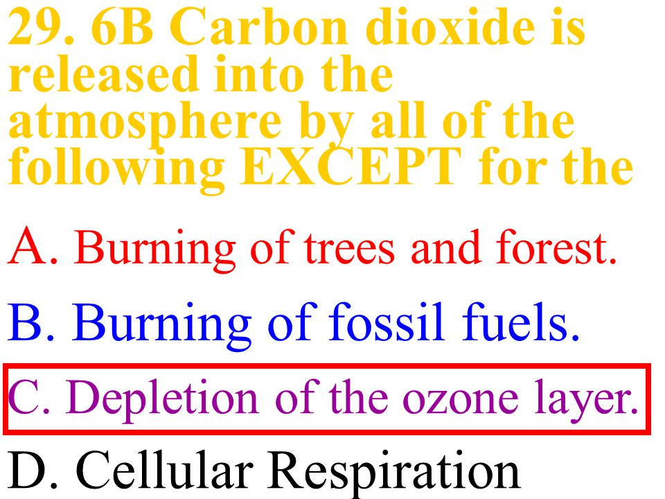 A. Burning of trees and forest. B. Burning of fossil fuels.