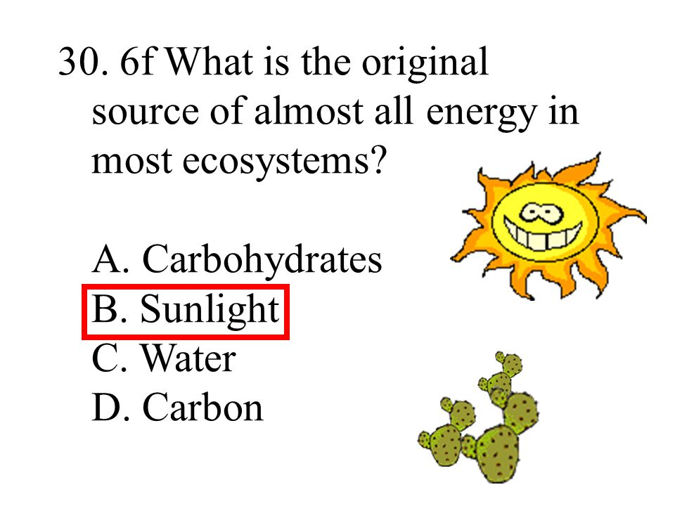 30. 6f What is the original source of almost all energy in most ecosystems