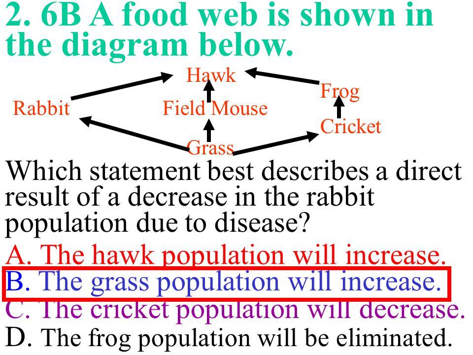 2. 6B A food web is shown in the diagram below.