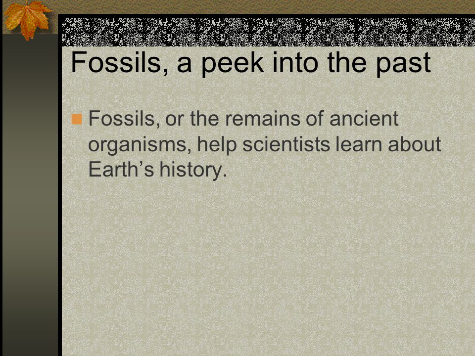 Fossils, a peek into the past
