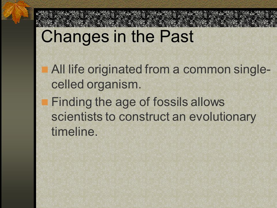 Changes in the Past All life originated from a common single-celled organism.