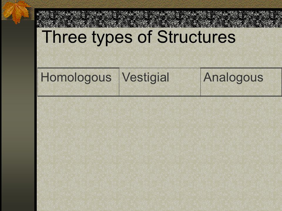 Three types of Structures