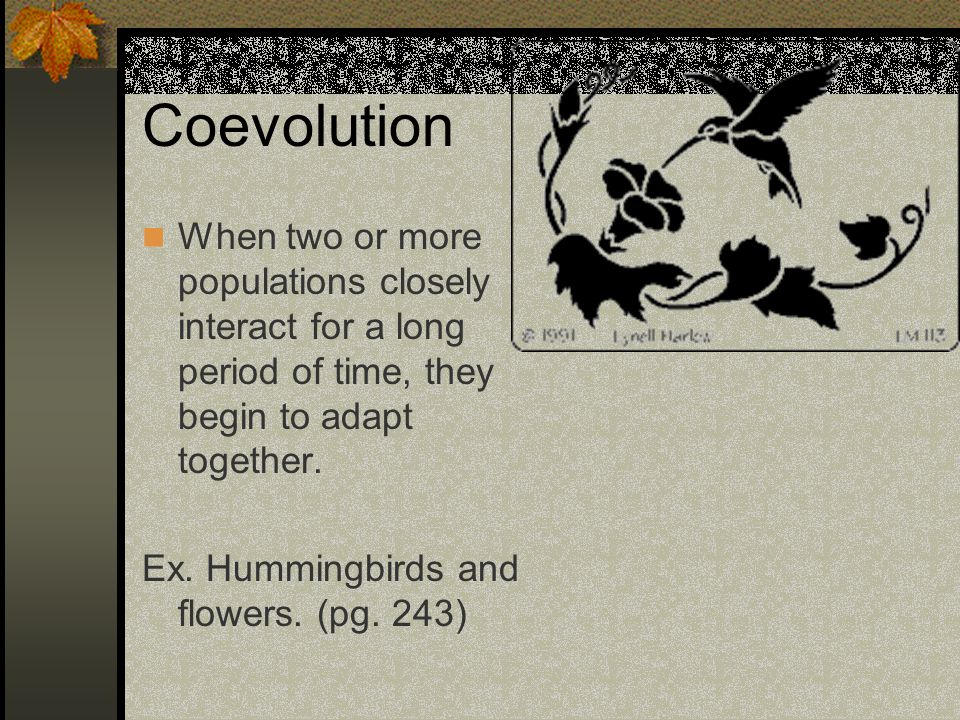 Coevolution When two or more populations closely interact for a long period of time, they begin to adapt together.