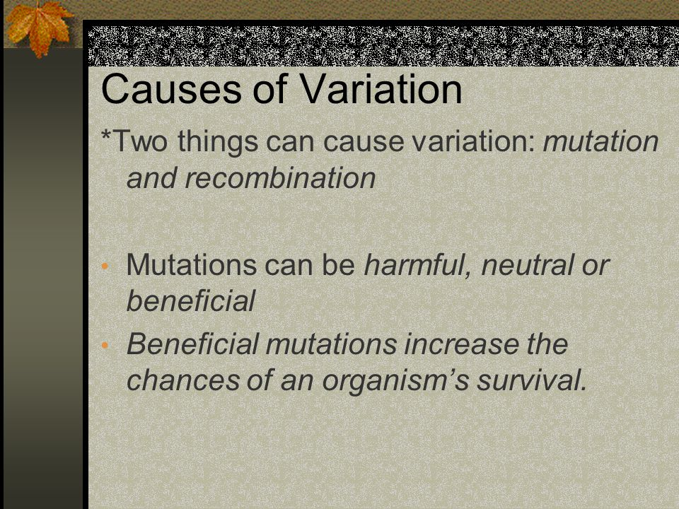 Causes of Variation *Two things can cause variation: mutation and recombination. Mutations can be harmful, neutral or beneficial.