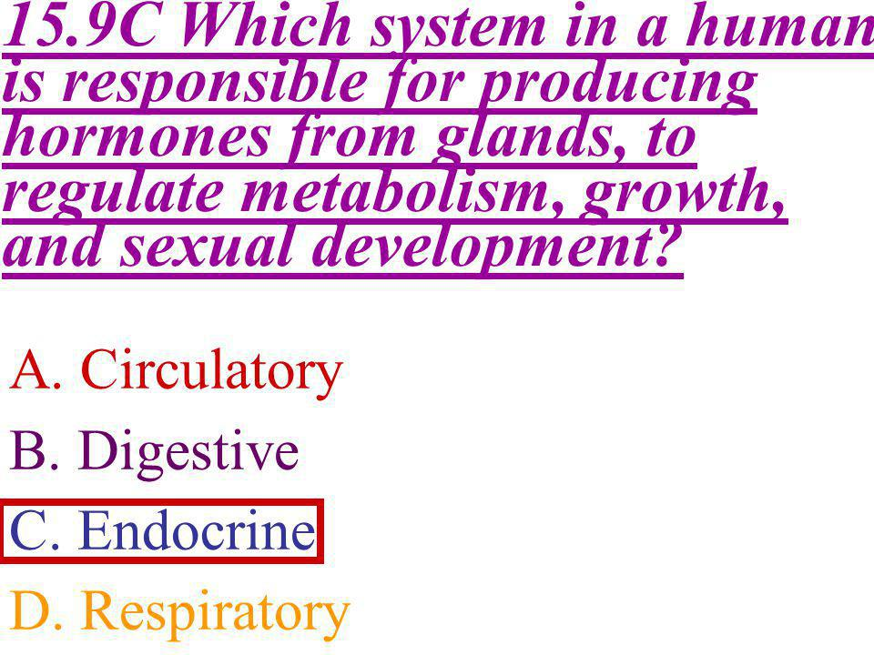 15.9C Which system in a human is responsible for producing hormones from glands, to regulate metabolism, growth, and sexual development
