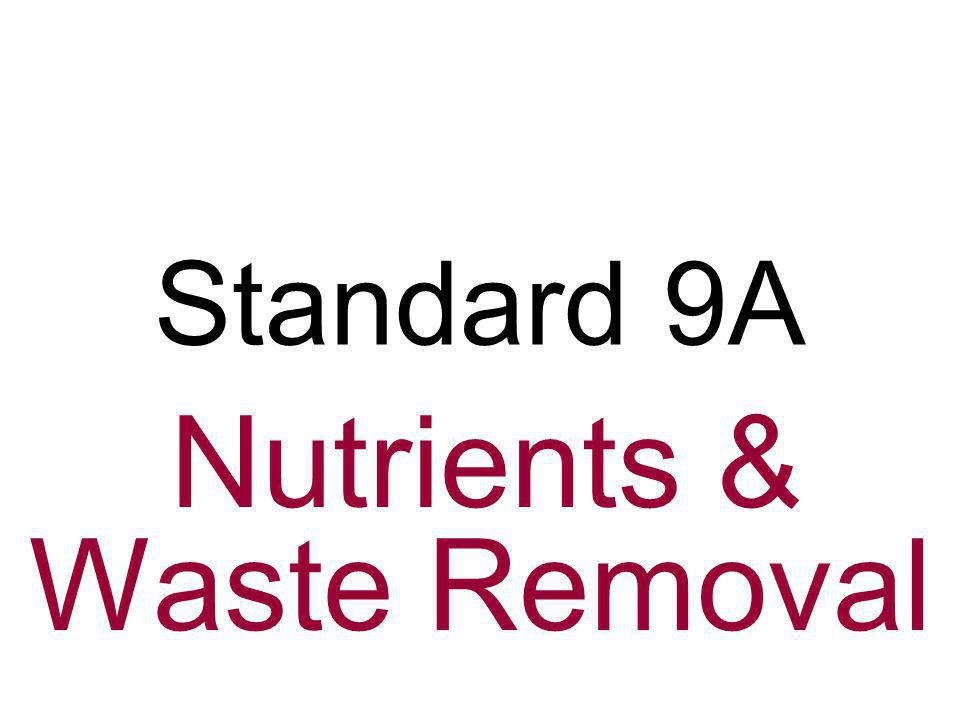 Nutrients & Waste Removal