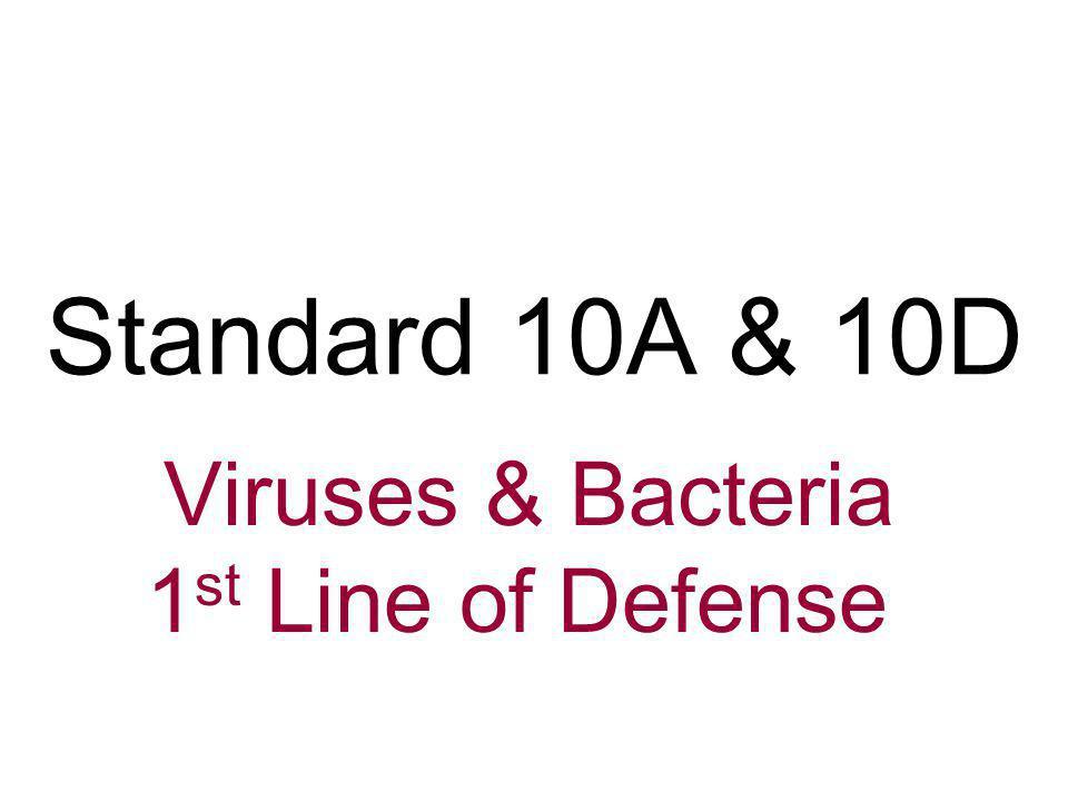 Viruses & Bacteria 1st Line of Defense