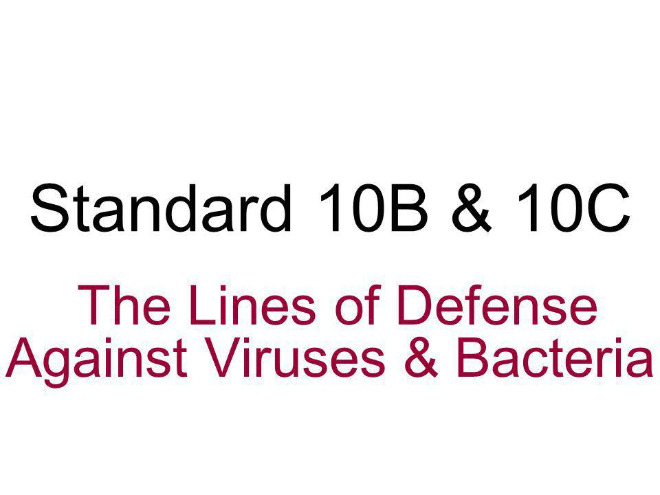 The Lines of Defense Against Viruses & Bacteria