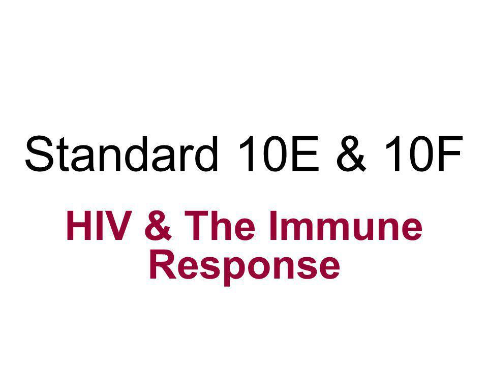 HIV & The Immune Response