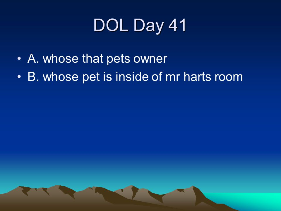 DOL Day 41 A. whose that pets owner