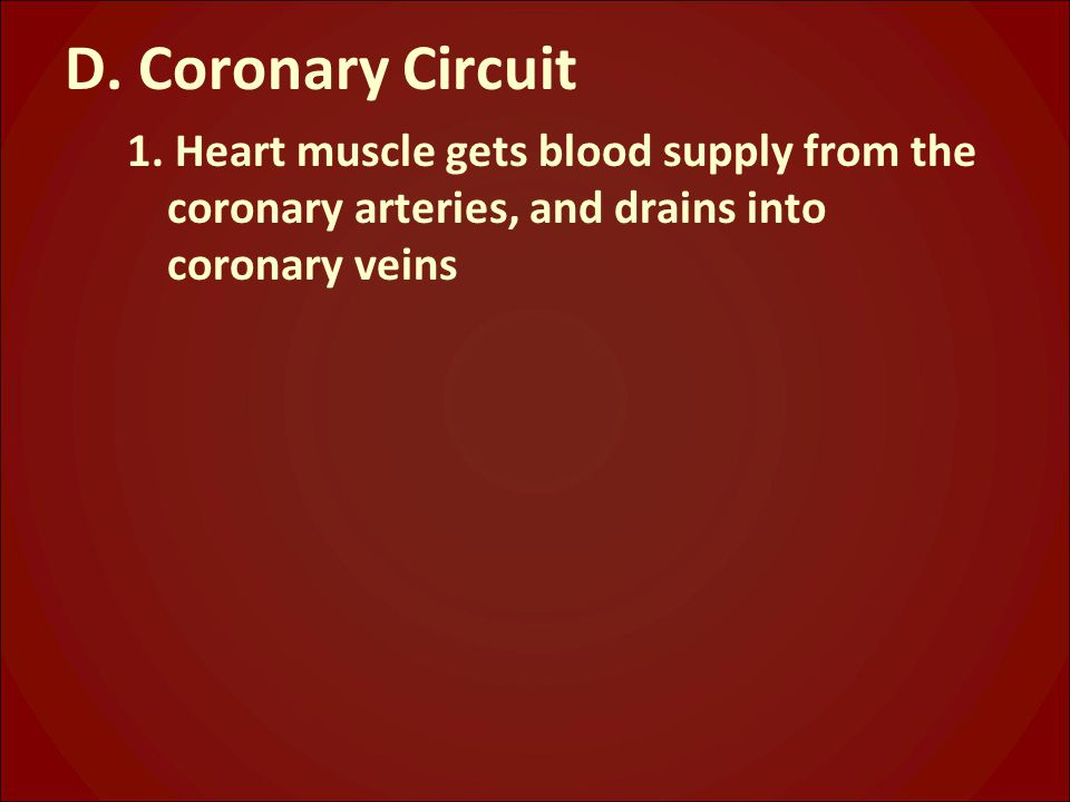 D. Coronary Circuit 1.