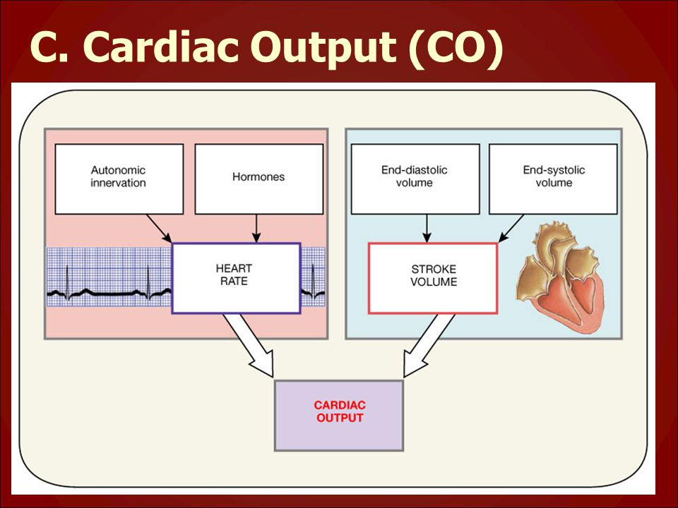 C. Cardiac Output (CO)
