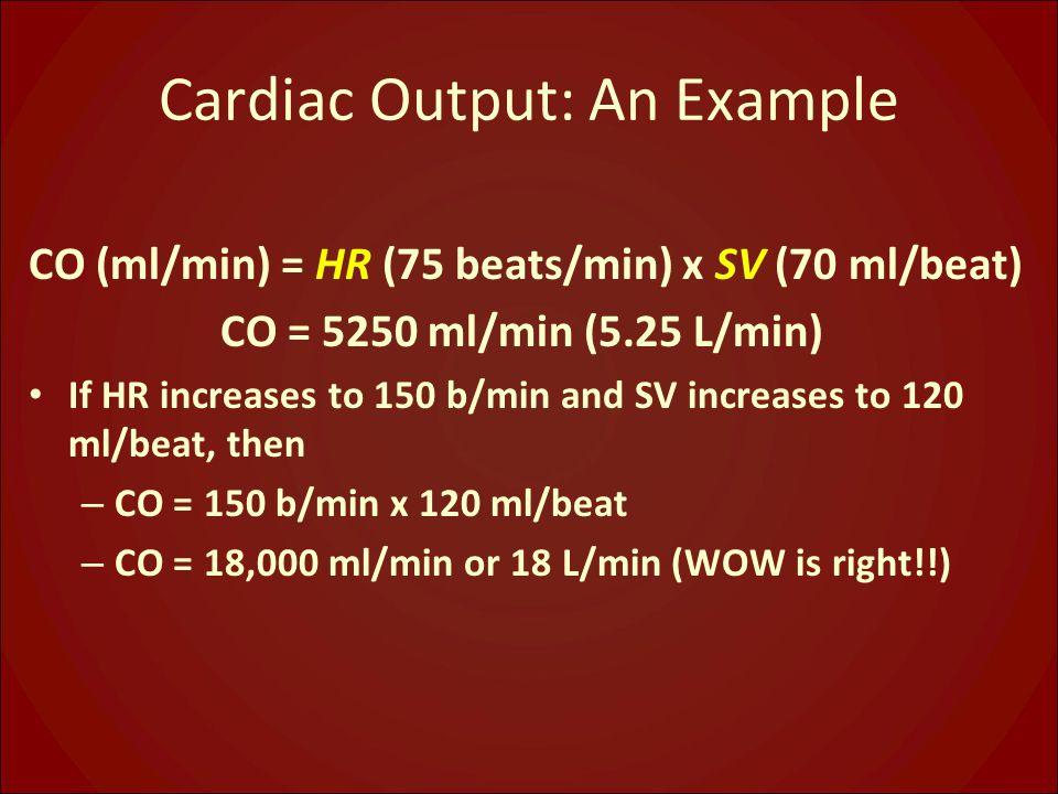 Cardiac Output: An Example